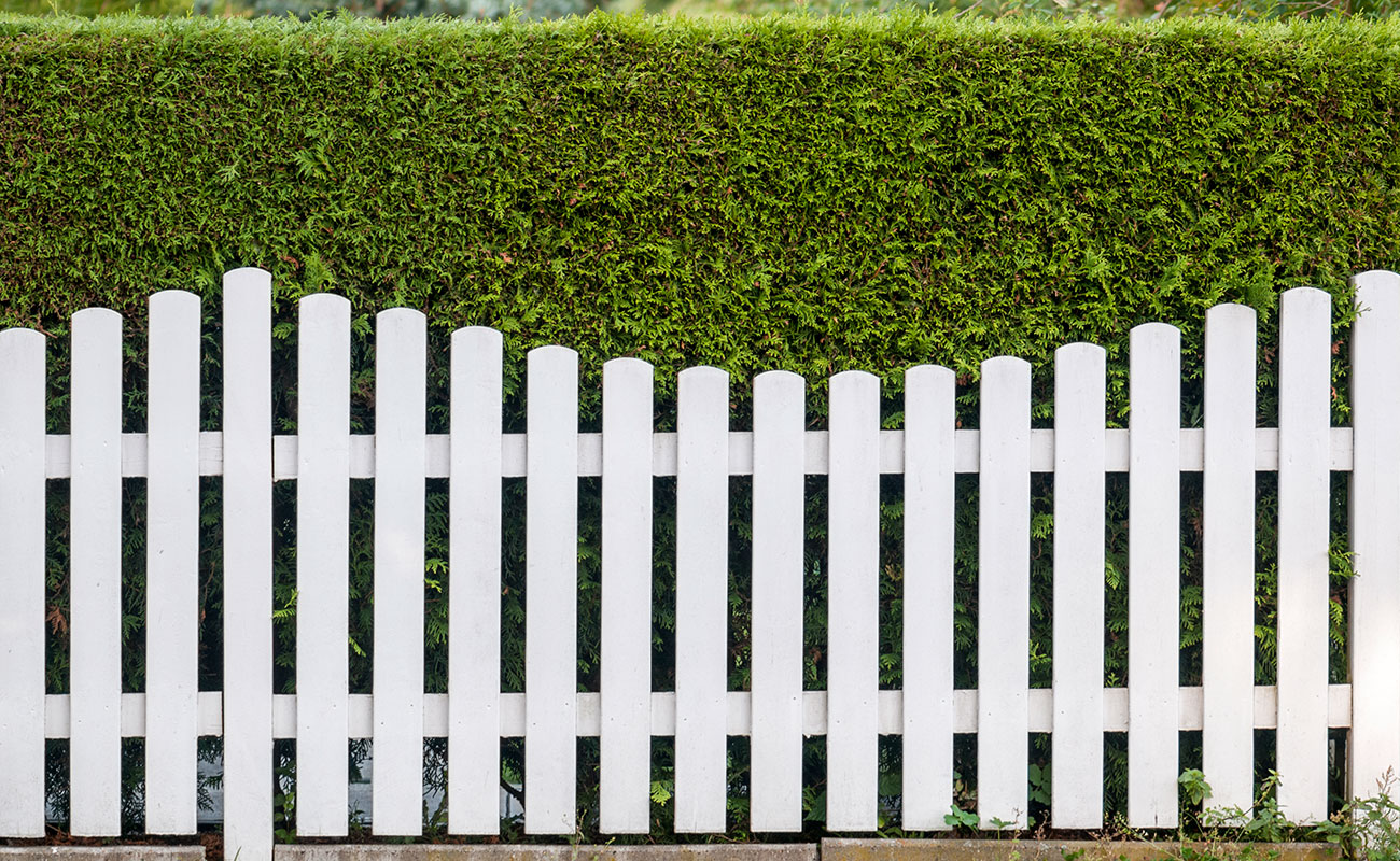 How To Achieve Privacy In Your Backyard Zones