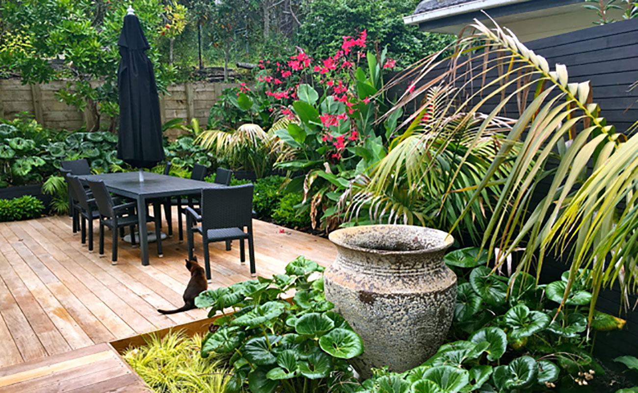 Mid range landscaped garden design zones for Garden landscape ideas nz