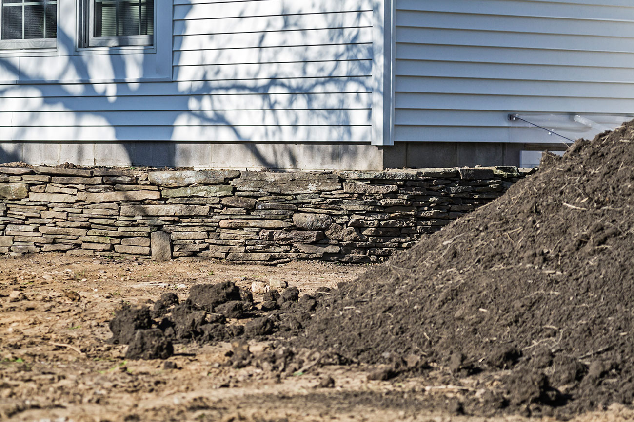 cost of landscaping your backyard in new zealand zones