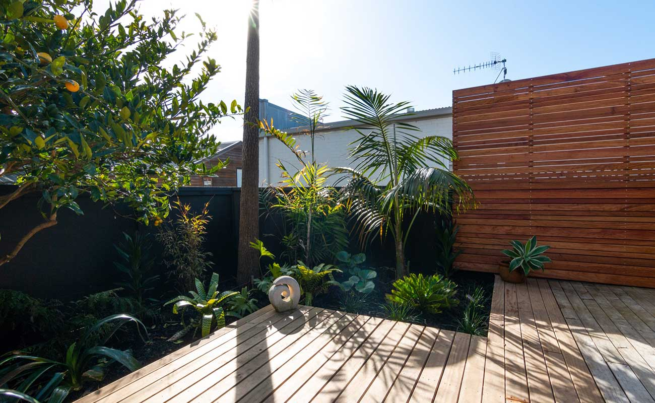 Privacy created in a Auckland landscaping project