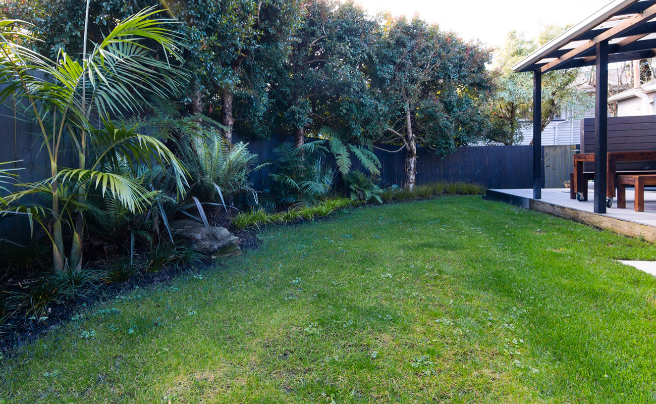 Landscape design in Auckland creating privacy from the neighbours