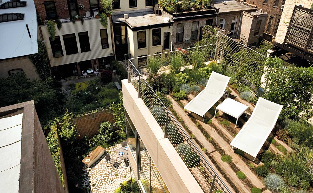ground and rooftop gardens in the same photo in Brooklyn