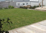 Lawns and Grass
