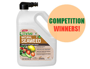 Competition - Yates Thrive Seaweed 2L