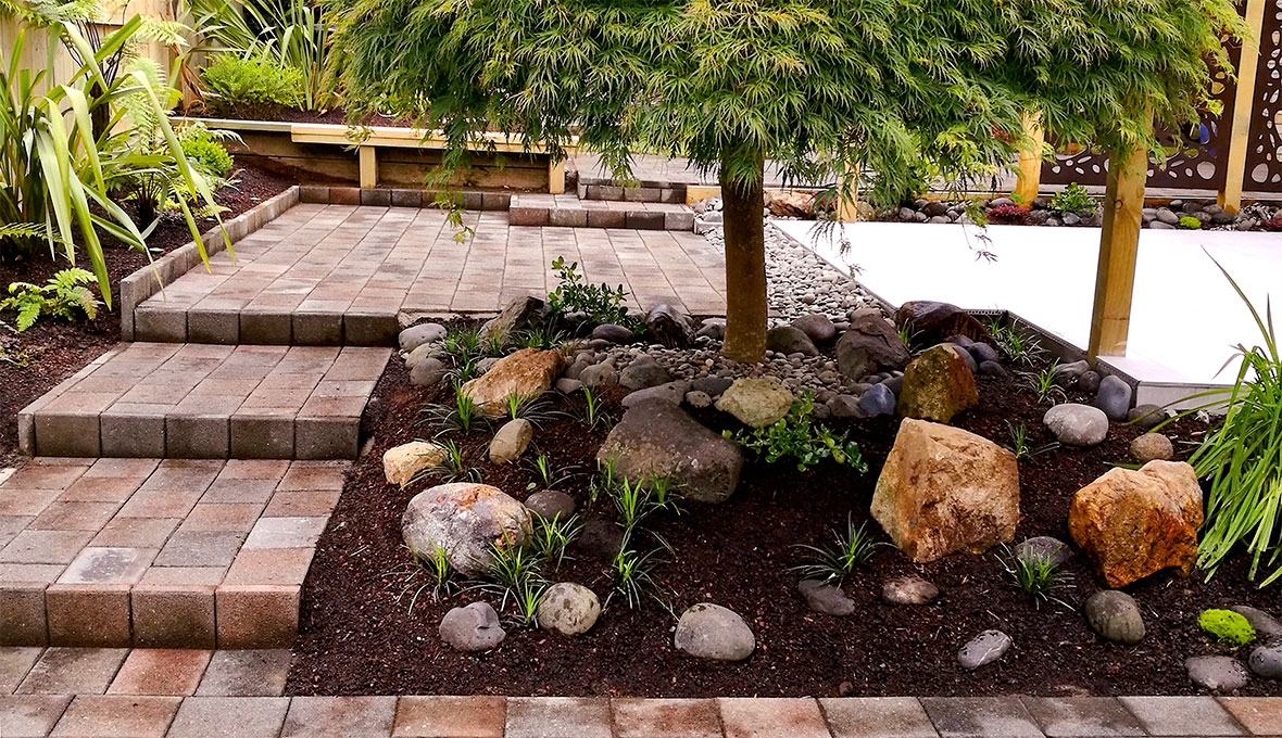 A backyard with a tree and paving stone