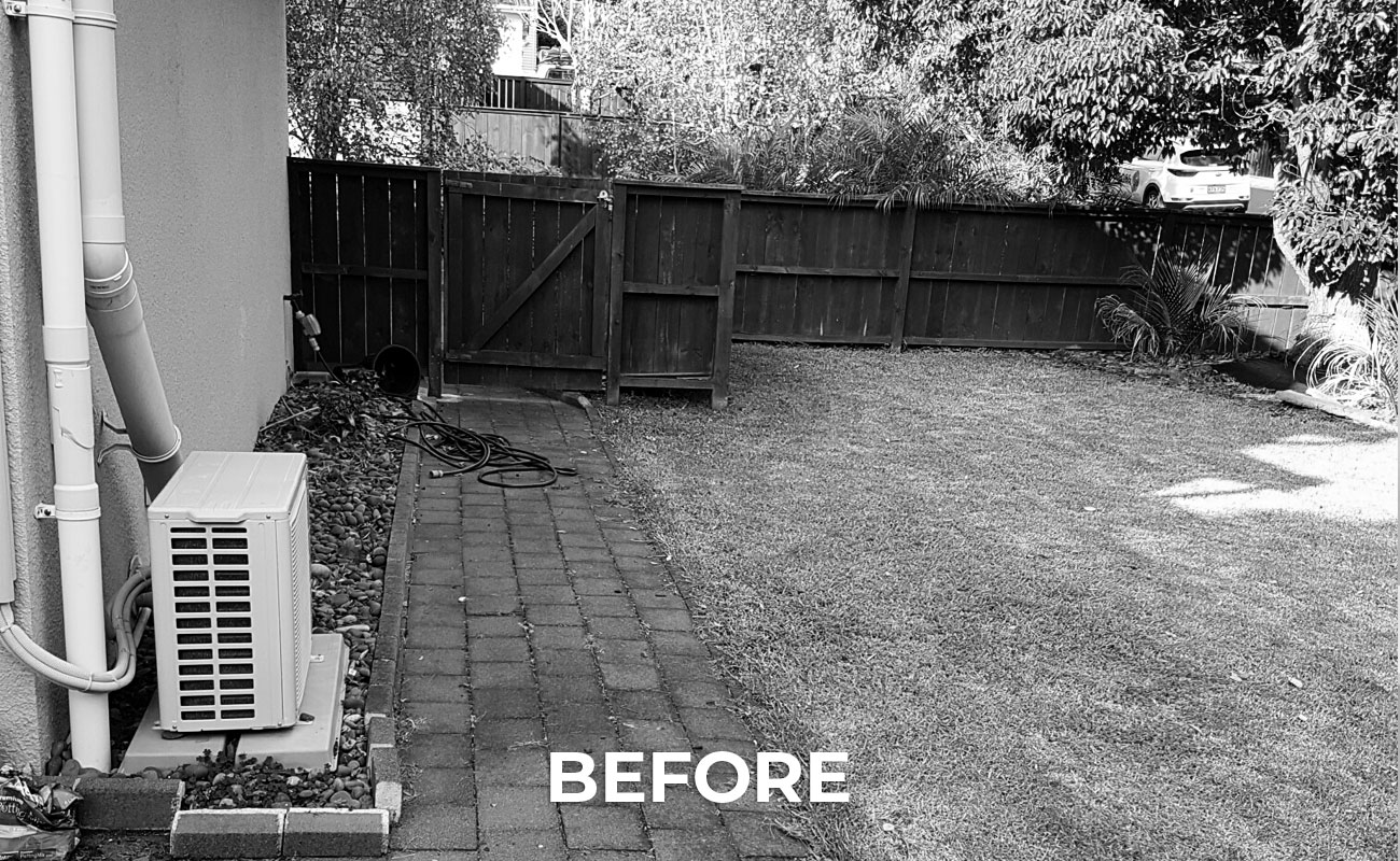 outdated backyard before landscaping