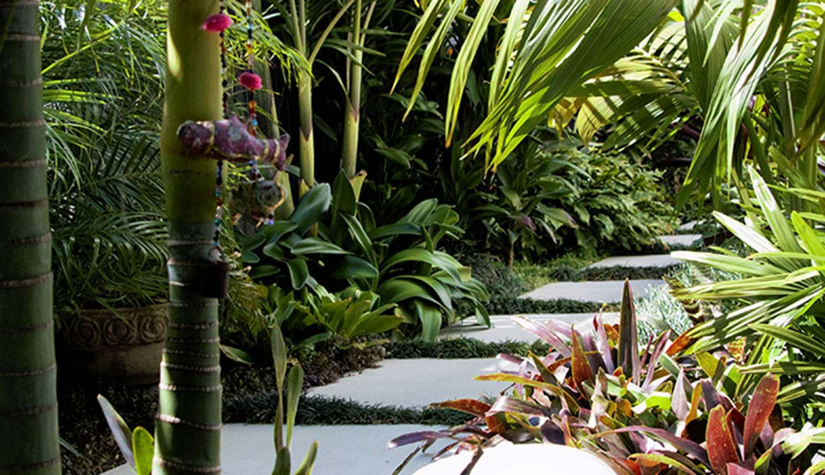 Tropical garden in Mount Manuganui