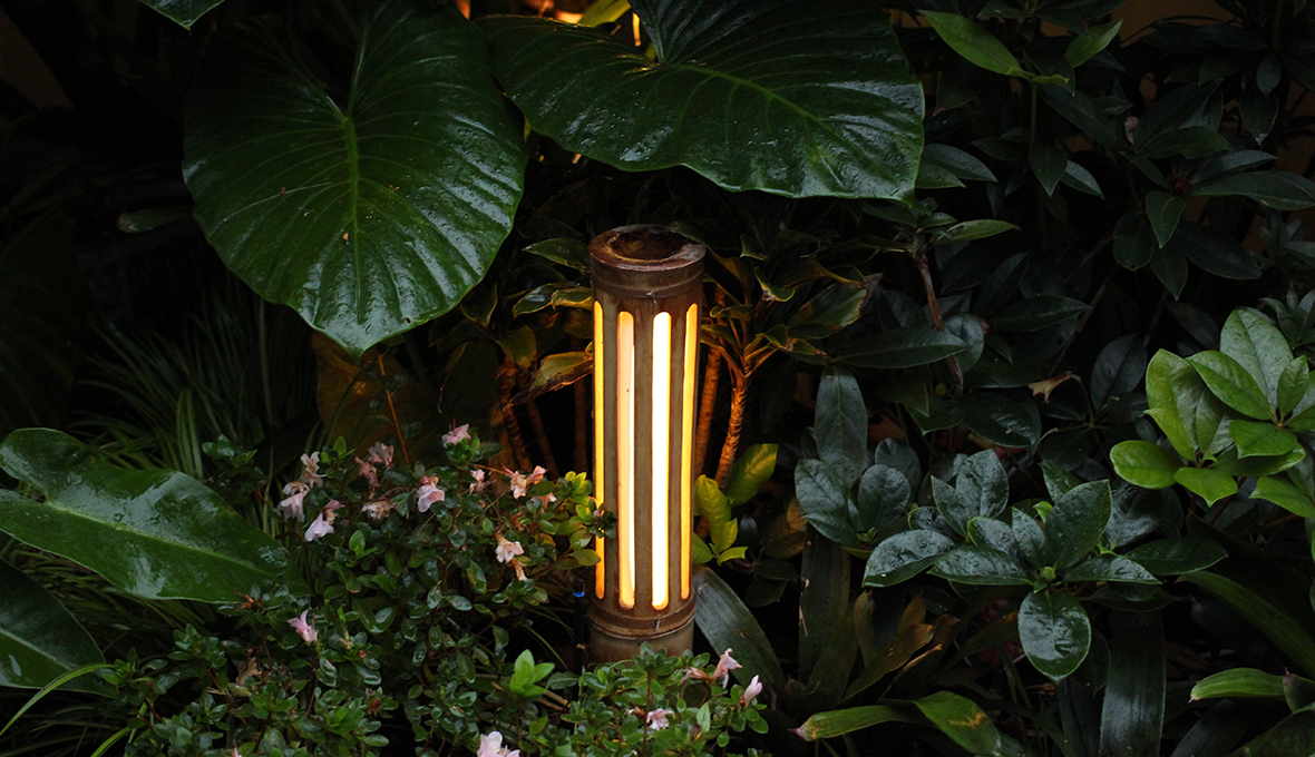 Zones landscaping small sub tropical garden plants lights