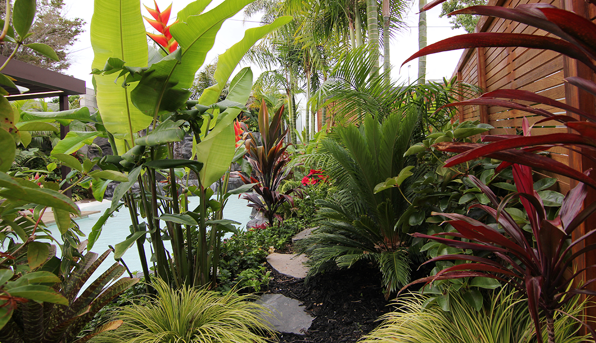 Zones landscaping subtropical resort plants