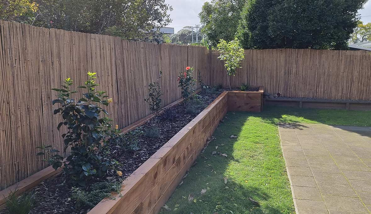 Time for a Better Backyard