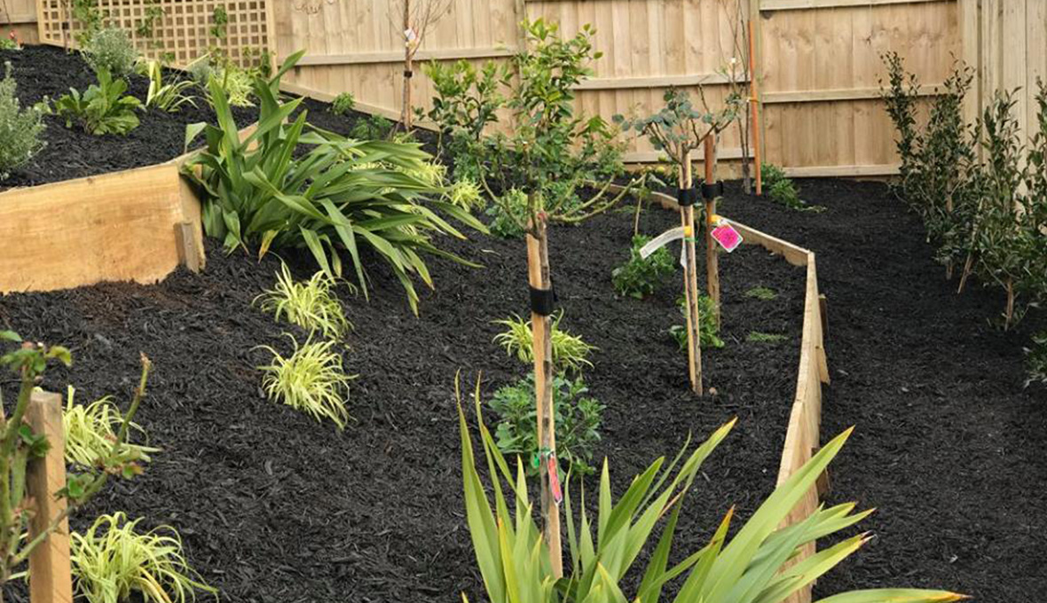 Garden with plants and black soil after planting work