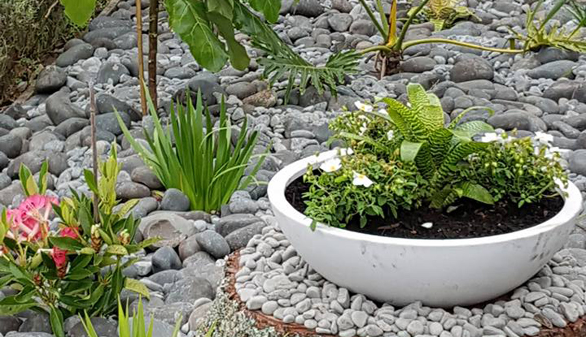 Plant pot on top of rocks