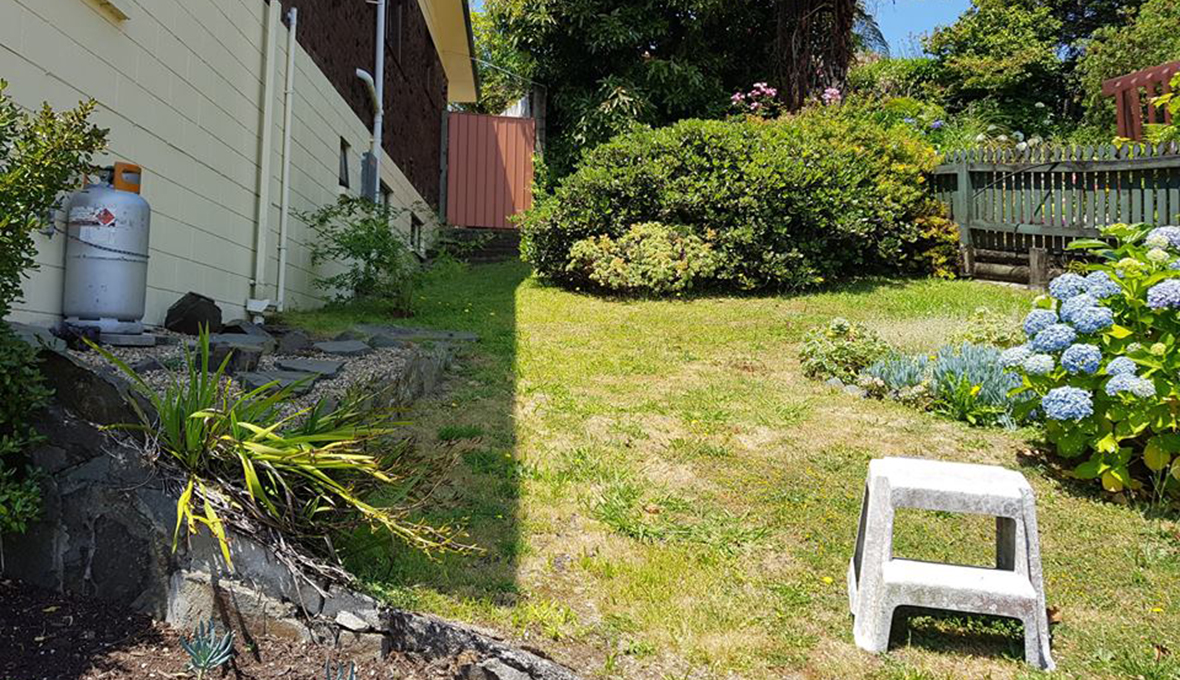 A steep garden with a grass area before the landscape project
