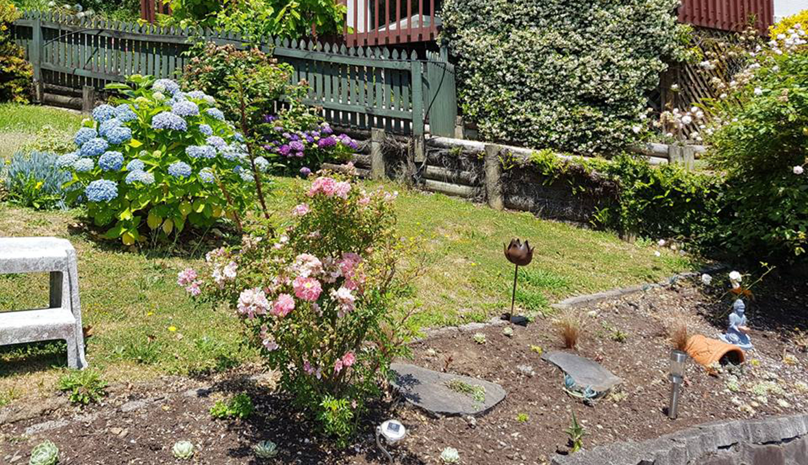 A steep garden with different kind of flower bushes and grass before the landscape project