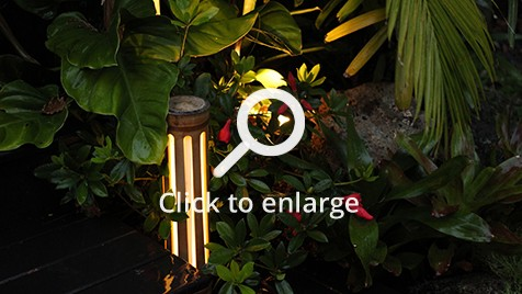 Zones landscaping small sub tropical garden bamboo lights