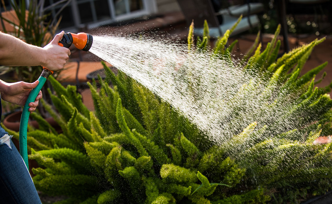 watering your garden with garden hons