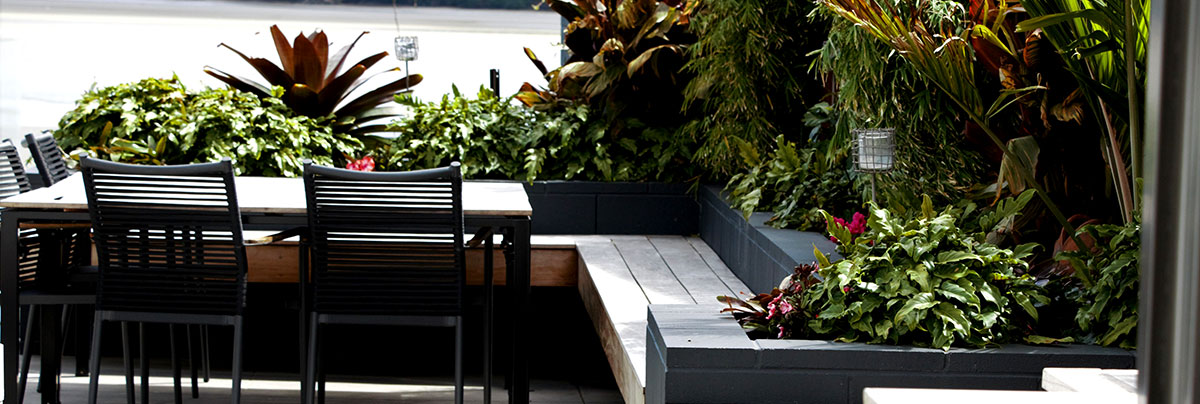 Complete design makeover for garden and outside dining area in Tauranga, New Zealand.