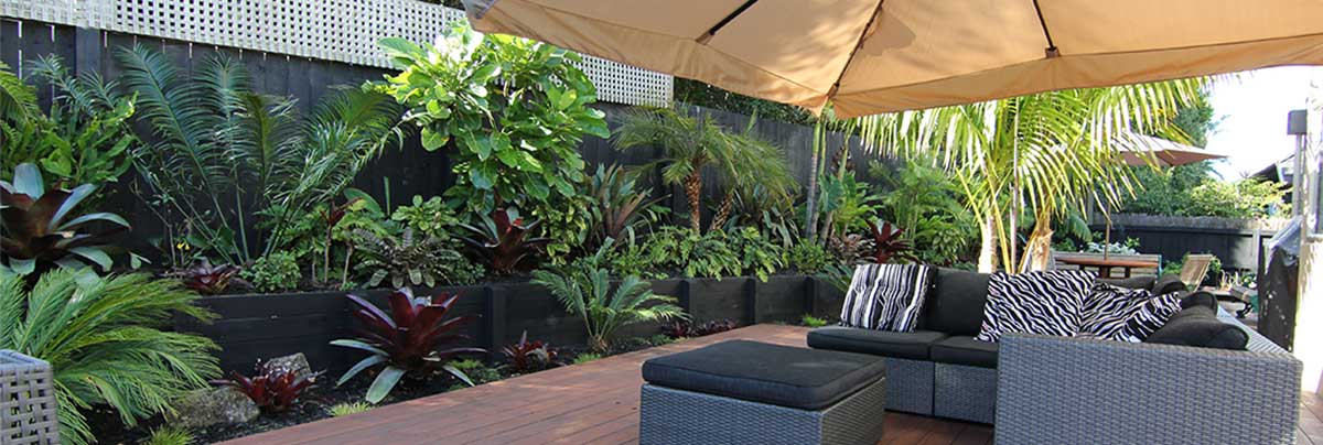 A zen and subtropical outdoor landscape zones for Small garden designs nz