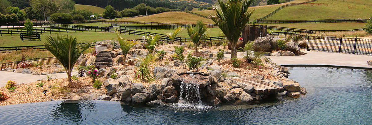 a resort style yard with a tropical twist zones landscaping