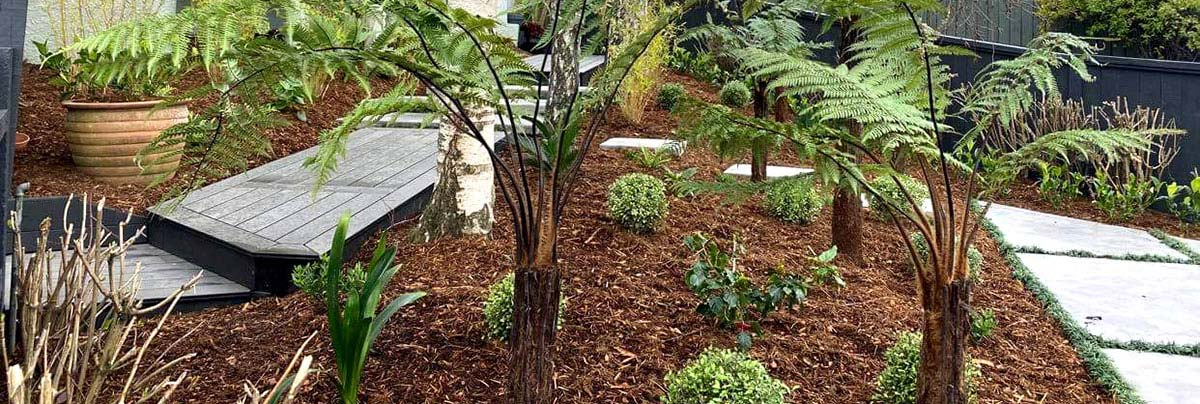 A new pathway and garden in Tauranga