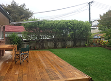 Case Study - Ready Lawn in Forest Hill