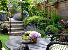 Article - How can I turn my tiny backyard into something special?