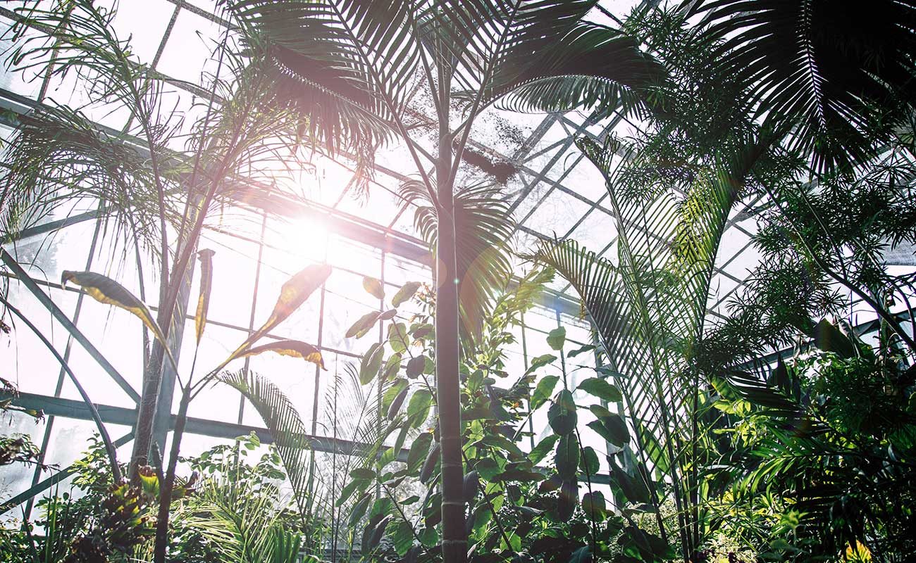 The Modern Greenhouse Guide | Zones